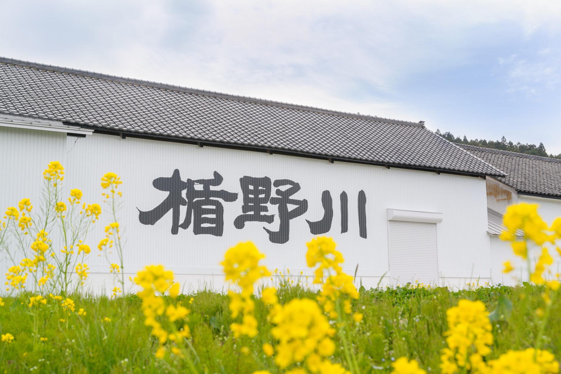 La brasserie Tatenokawa Shuzo 楯の川酒造